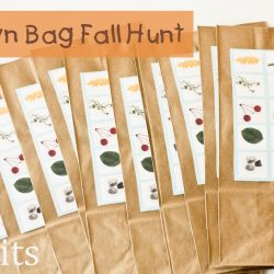 Fall Hunt – Guest Post