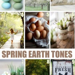 "Spring ""get-in-the"" Mood Boards"