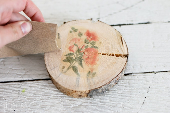 Botanical-wood-slices-10