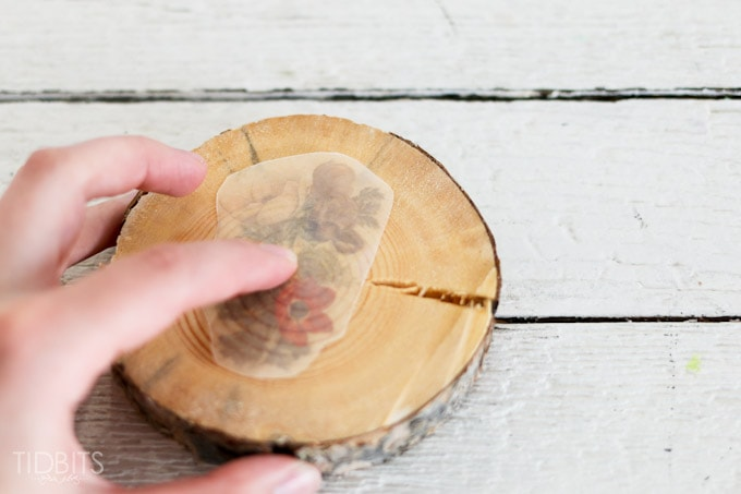 Botanical-wood-slices-7 (2)