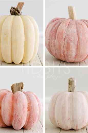 How-to White Wash a Pumpkin + Add a Driftwood Stem