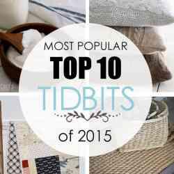 Most Popular Top 10 TIDBITS of 2015
