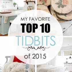 My Favorite Top 10 TIDBITS of 2015