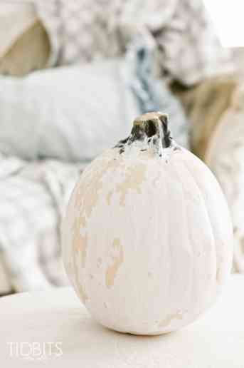 Chippy Paint Pumpkin Tutorial