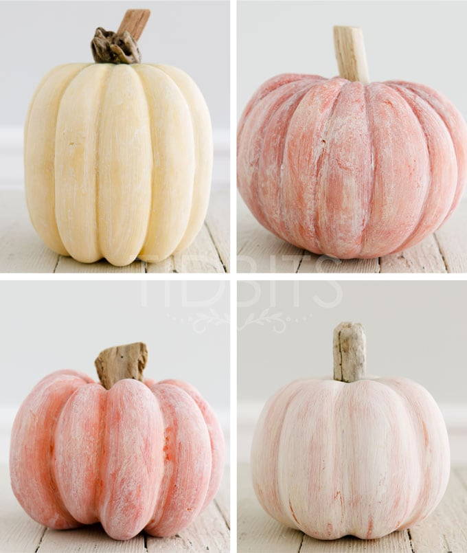 White washed pumpkin with a driftwood stem.