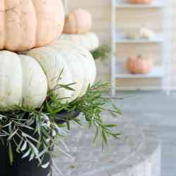 Fall Home Tour   On the Porch