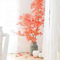 Fall Leaves in Decor