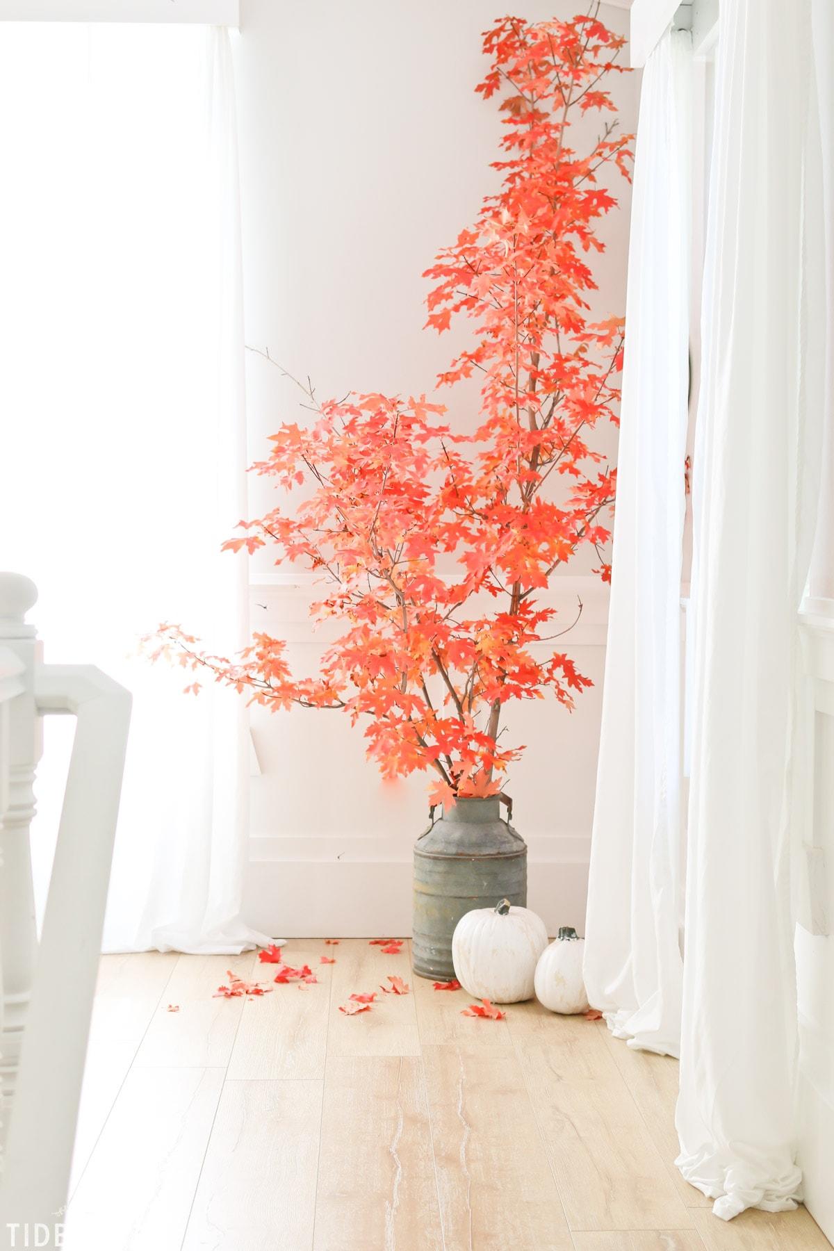 Fall tree to add character to home