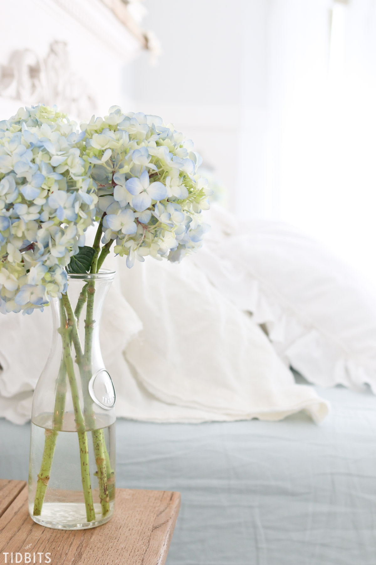 soft blue hydrangeas