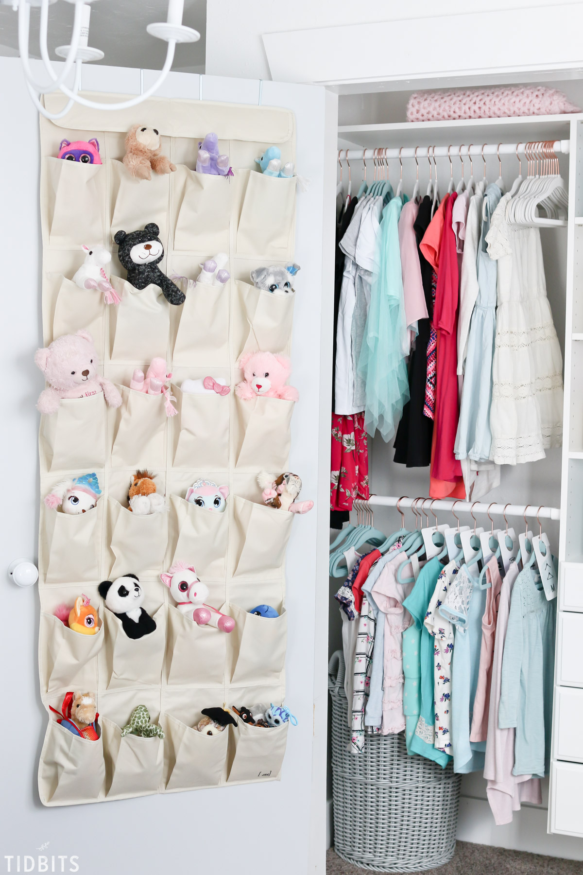 Kids closet organization for stuffed animals
