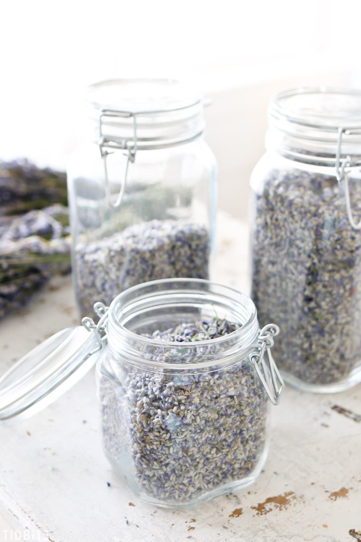 dried lavender buds in jars