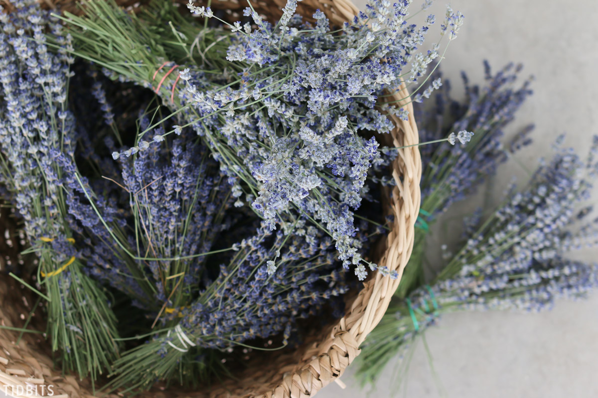 basket full of dried lavender