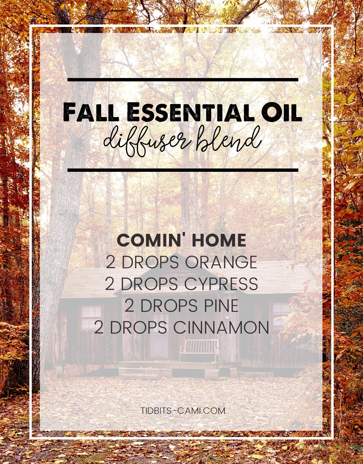 comin home essential oil diffuser blend