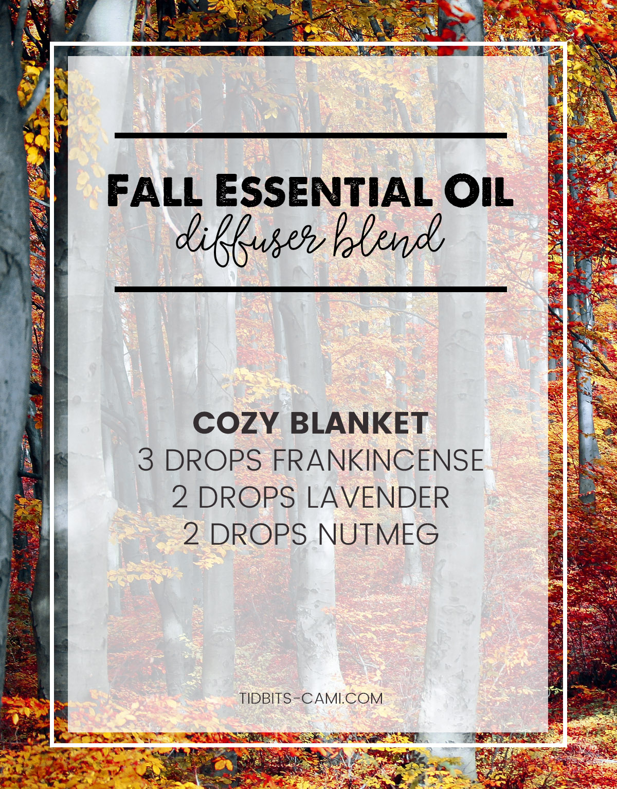 cozy blanket essential oil diffuser blend