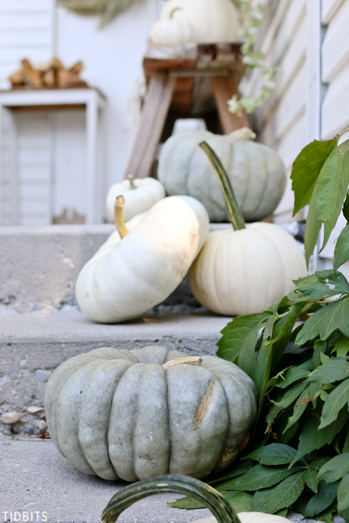 heirloom pumpkins on Fall front porch