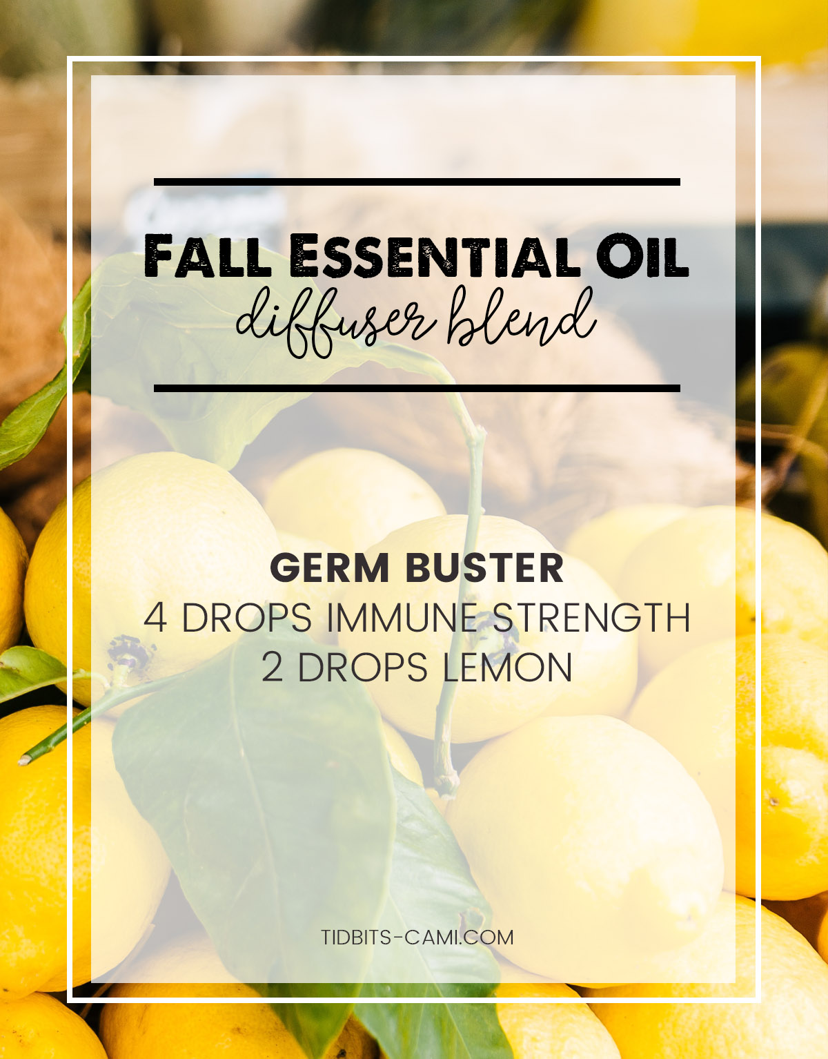 germ buster essential oil diffuser blend
