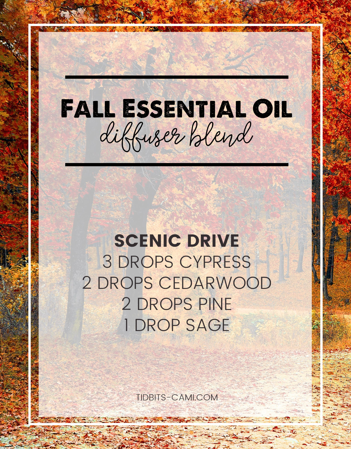 scenic drive essential oil diffuser blend