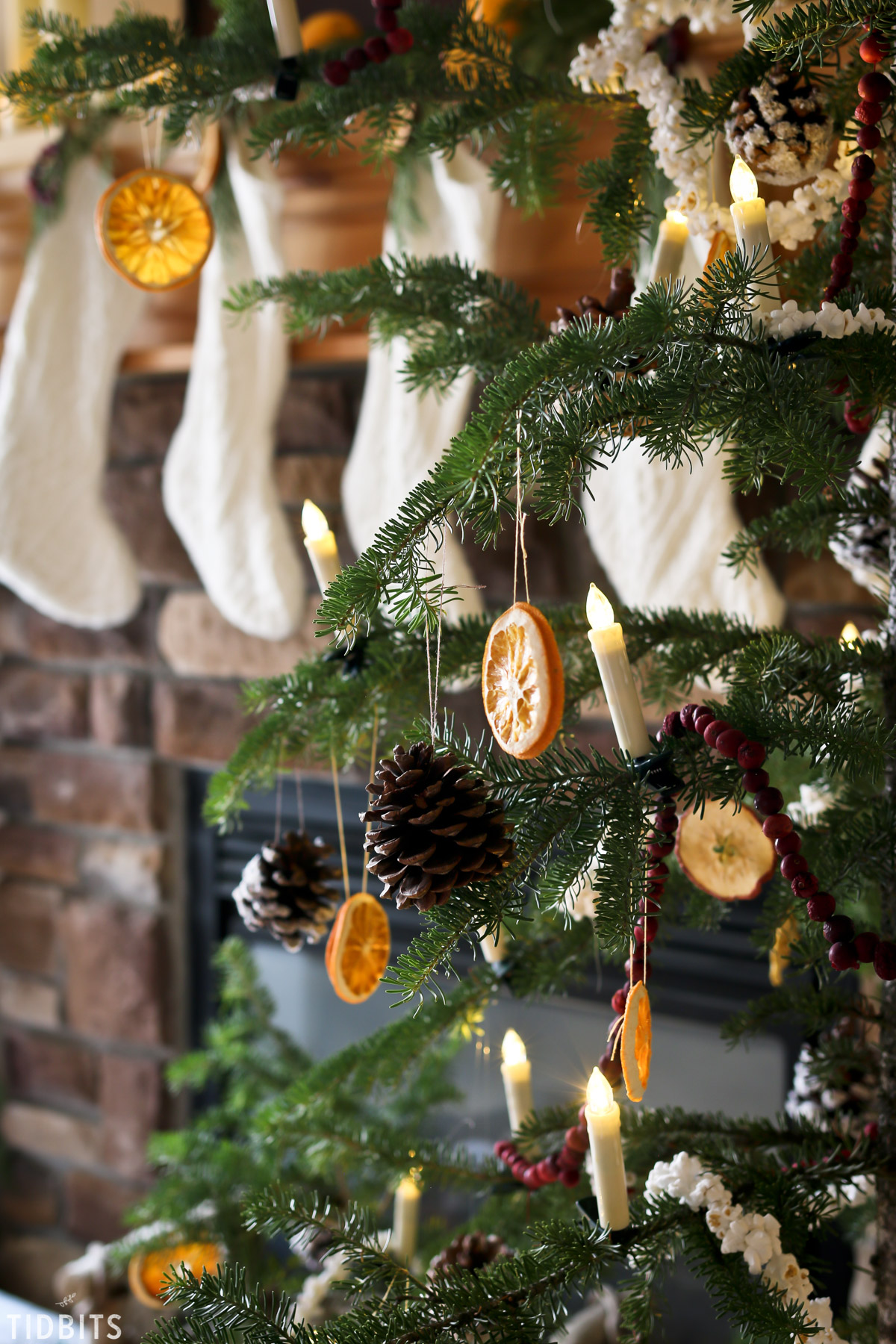 Natural Christmas Decorations - Tidbits