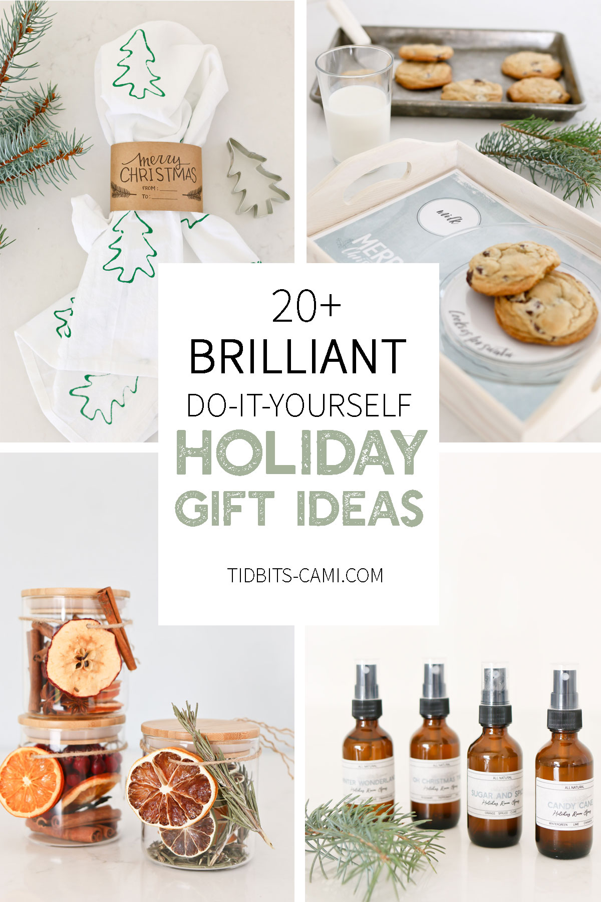 Over 20 Holiday gift ideas