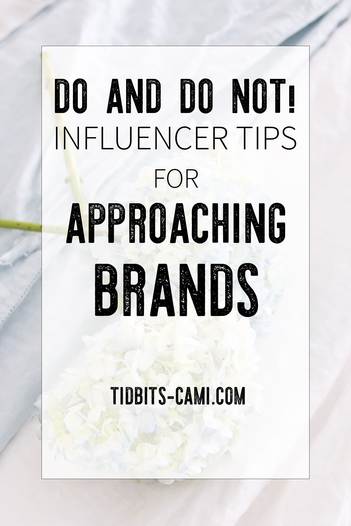 influencer tips for approaching brands