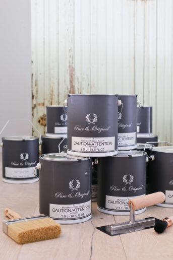 Natural lime and mineral paints
