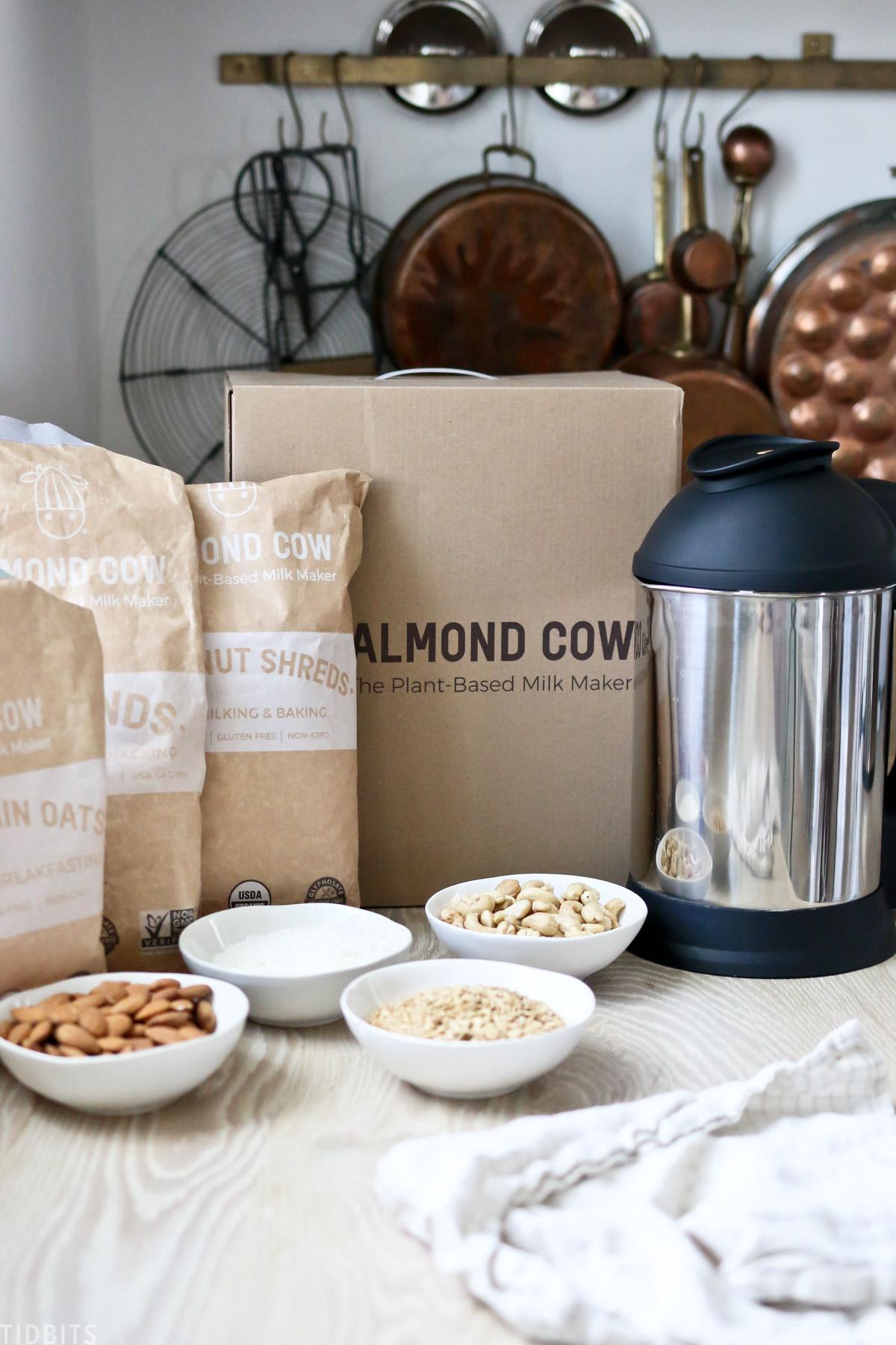 How to Make Almond Milk, Cashew Milk, Oat Milk and Coconut Milk | CRAZY EASY!