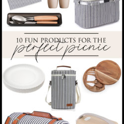10 Fun Products for the Perfect Picnic