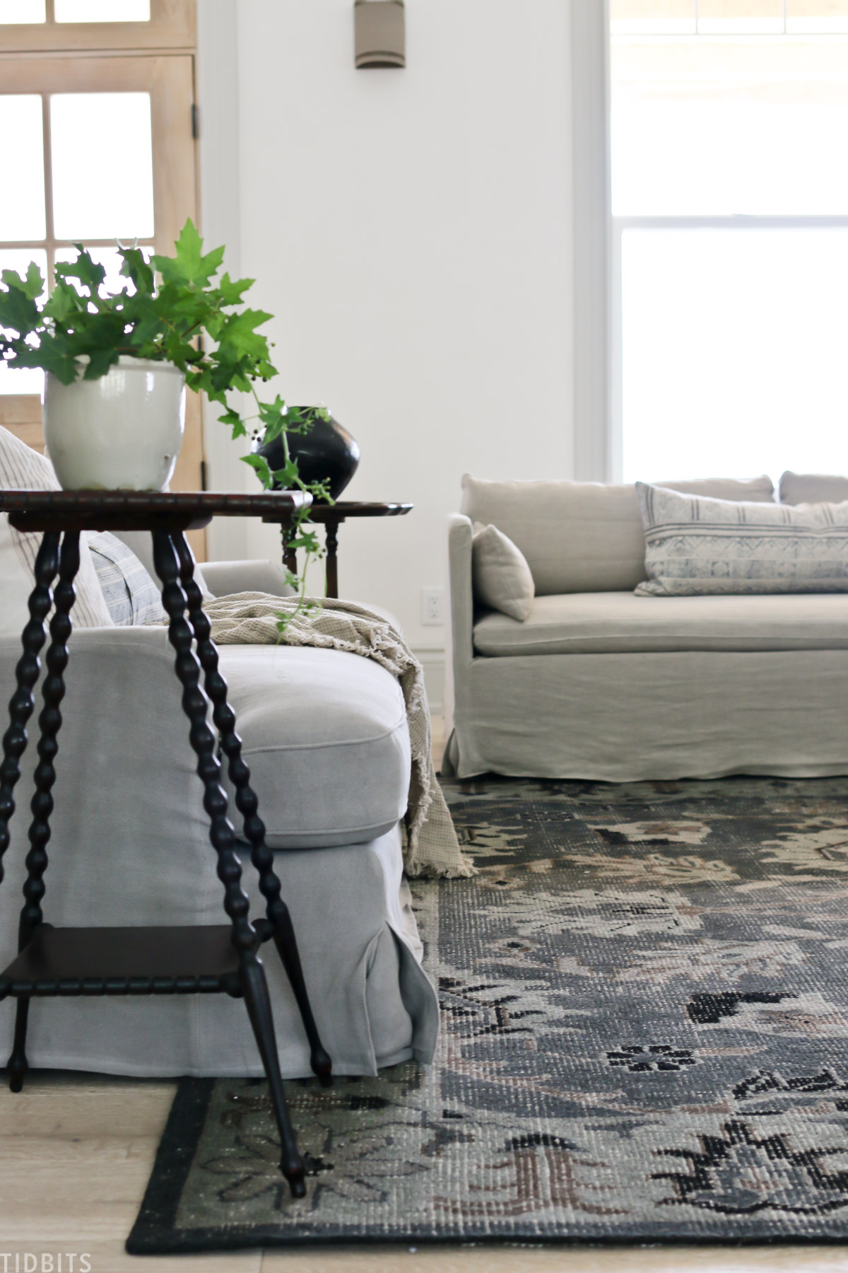 Living room updates | Couches and Rug