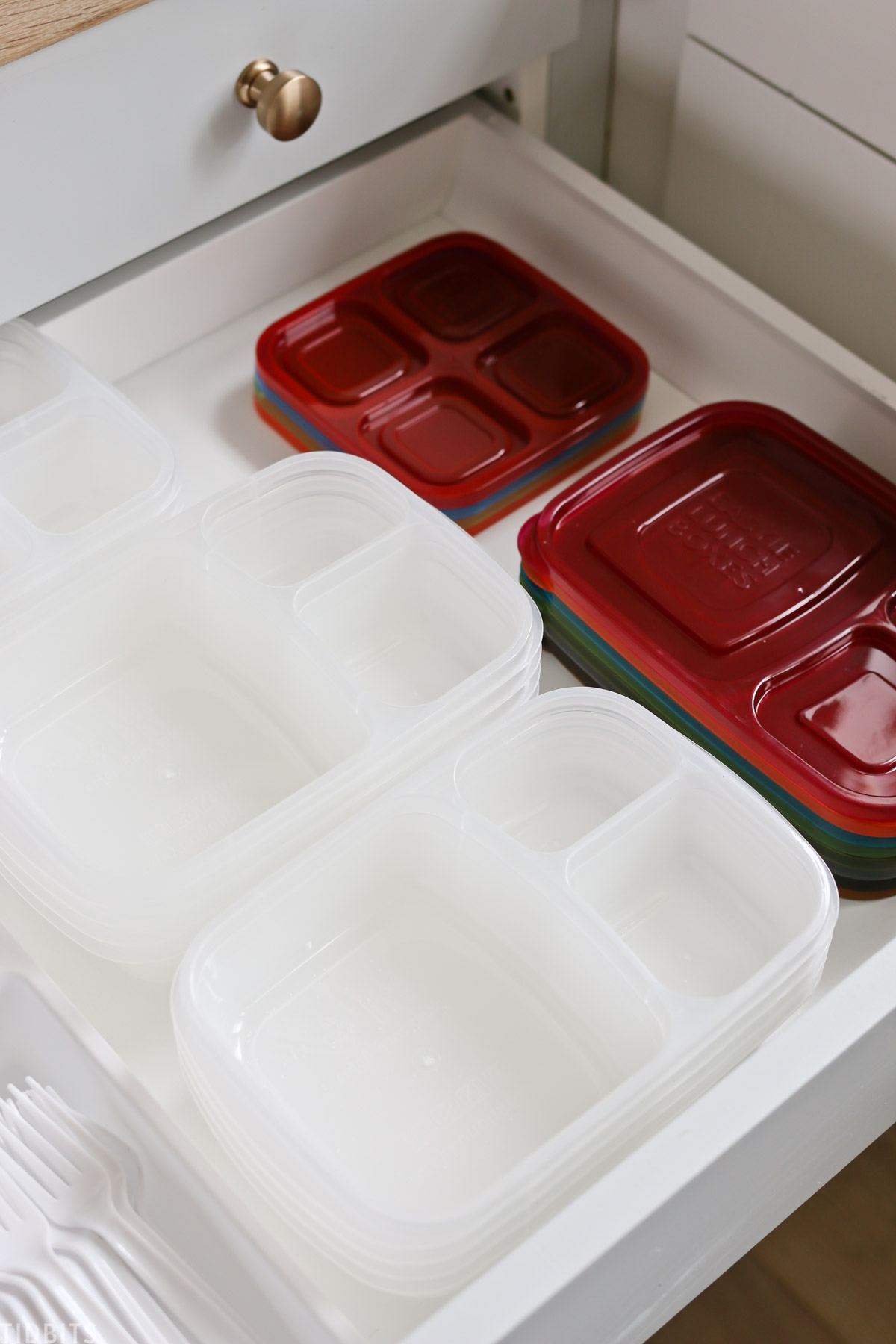 bento lunch boxes and lunch packing organization