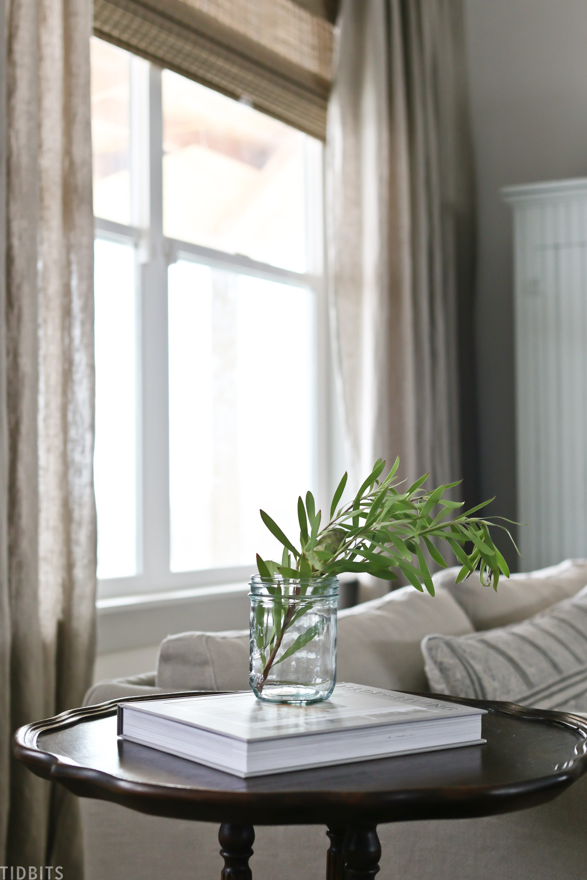 side table with book and plant that's placed next to couch in front of living room with natural light coming in