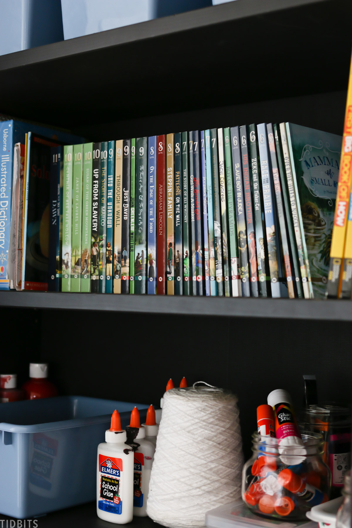 cupboard for homeschooling showing books, glue, string, and other school supplies