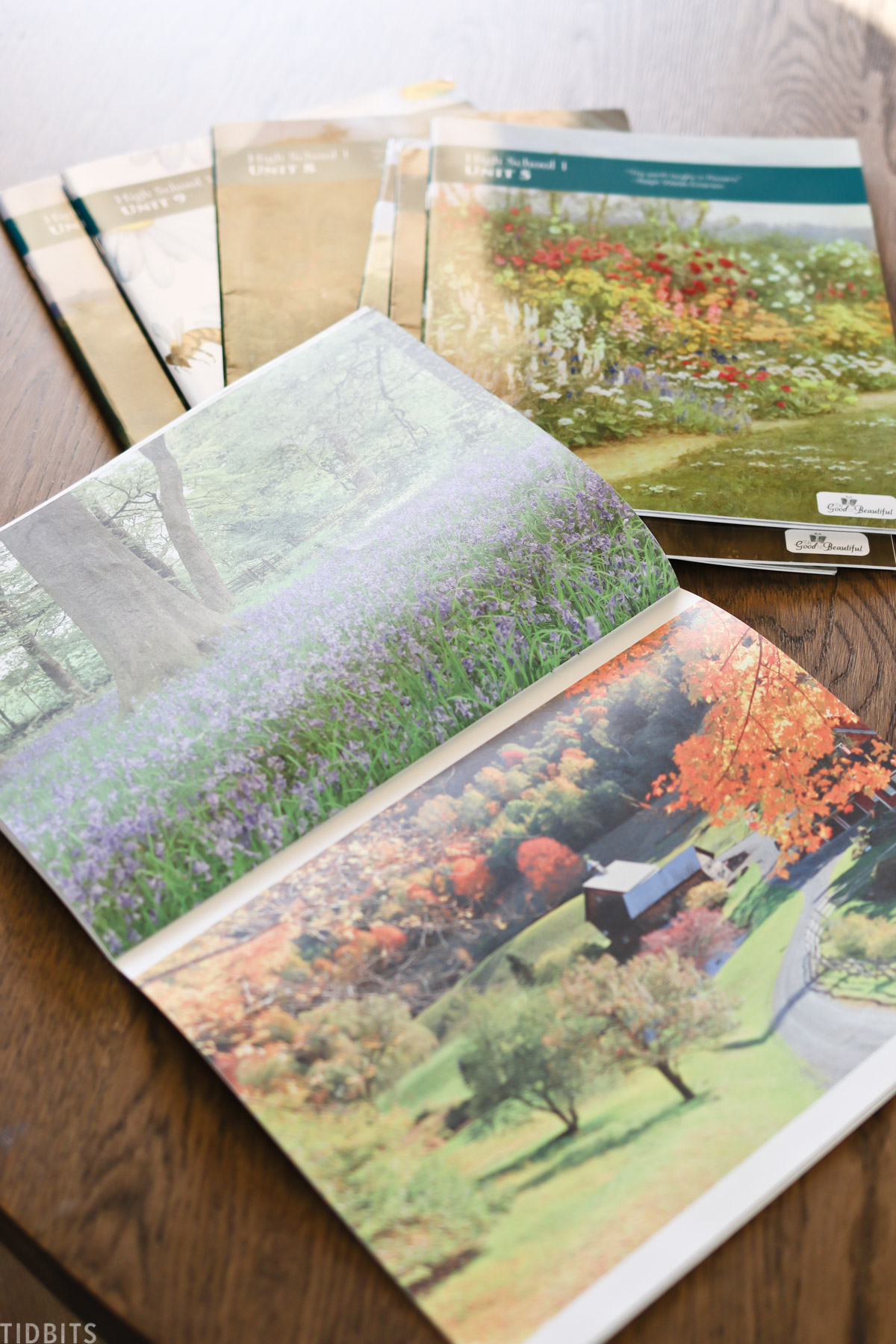 homeschooling booklets with one showing pictures of nature