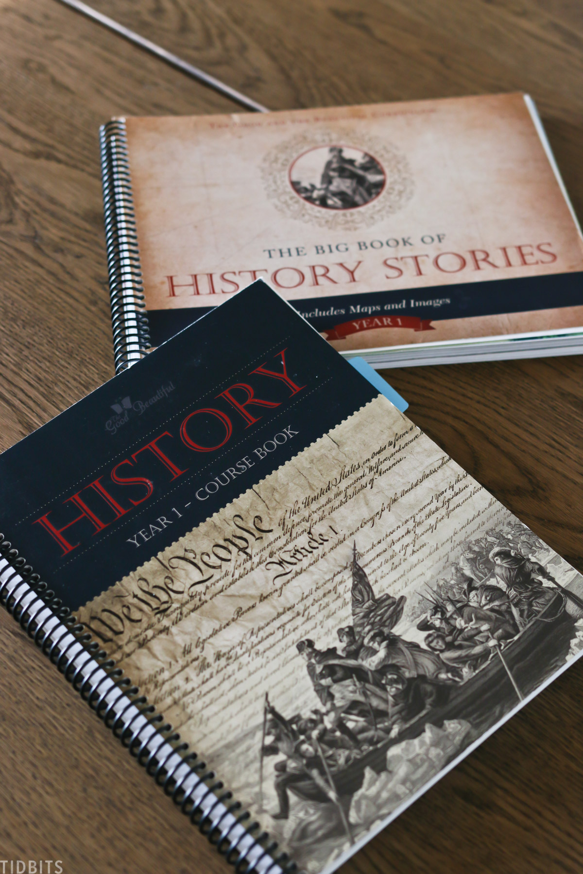 homeschooling books for history class