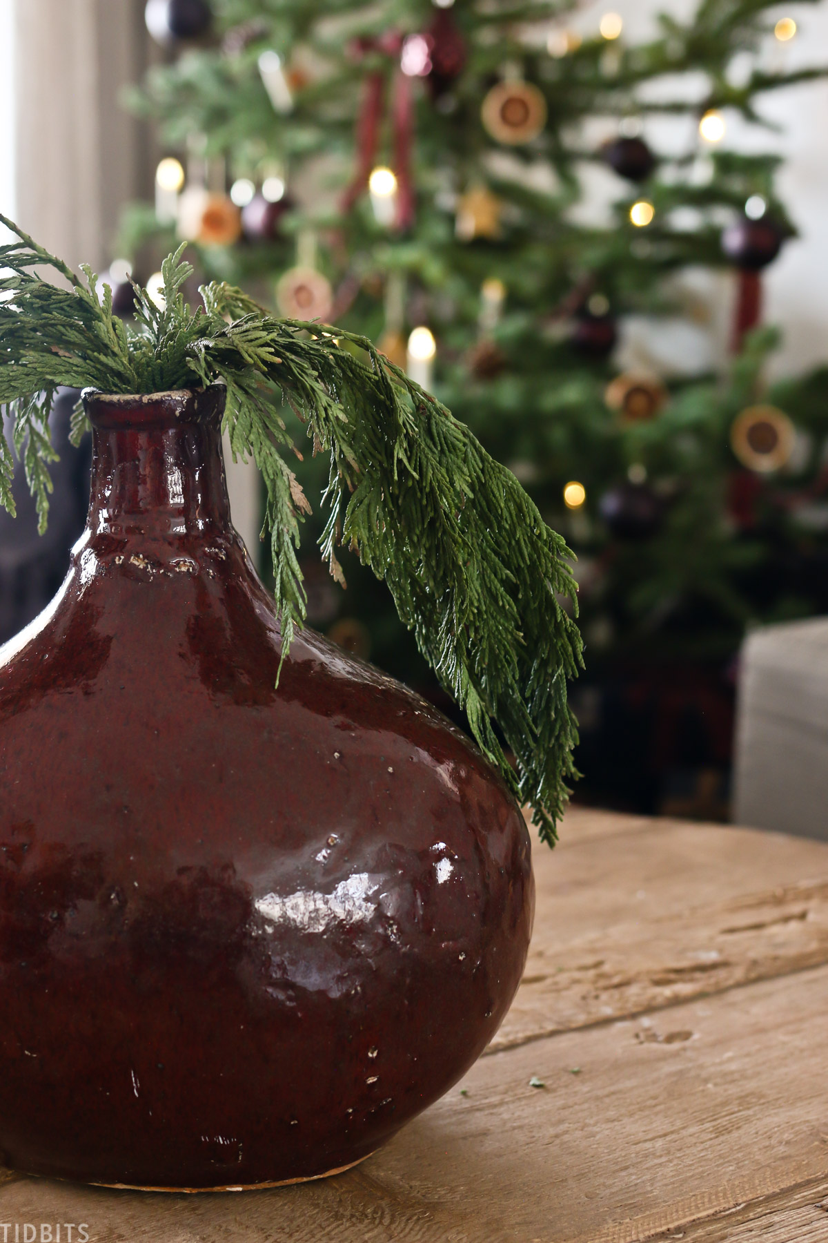 maroon-colored vase placed on coffee table with Christmas tree branches inside of it