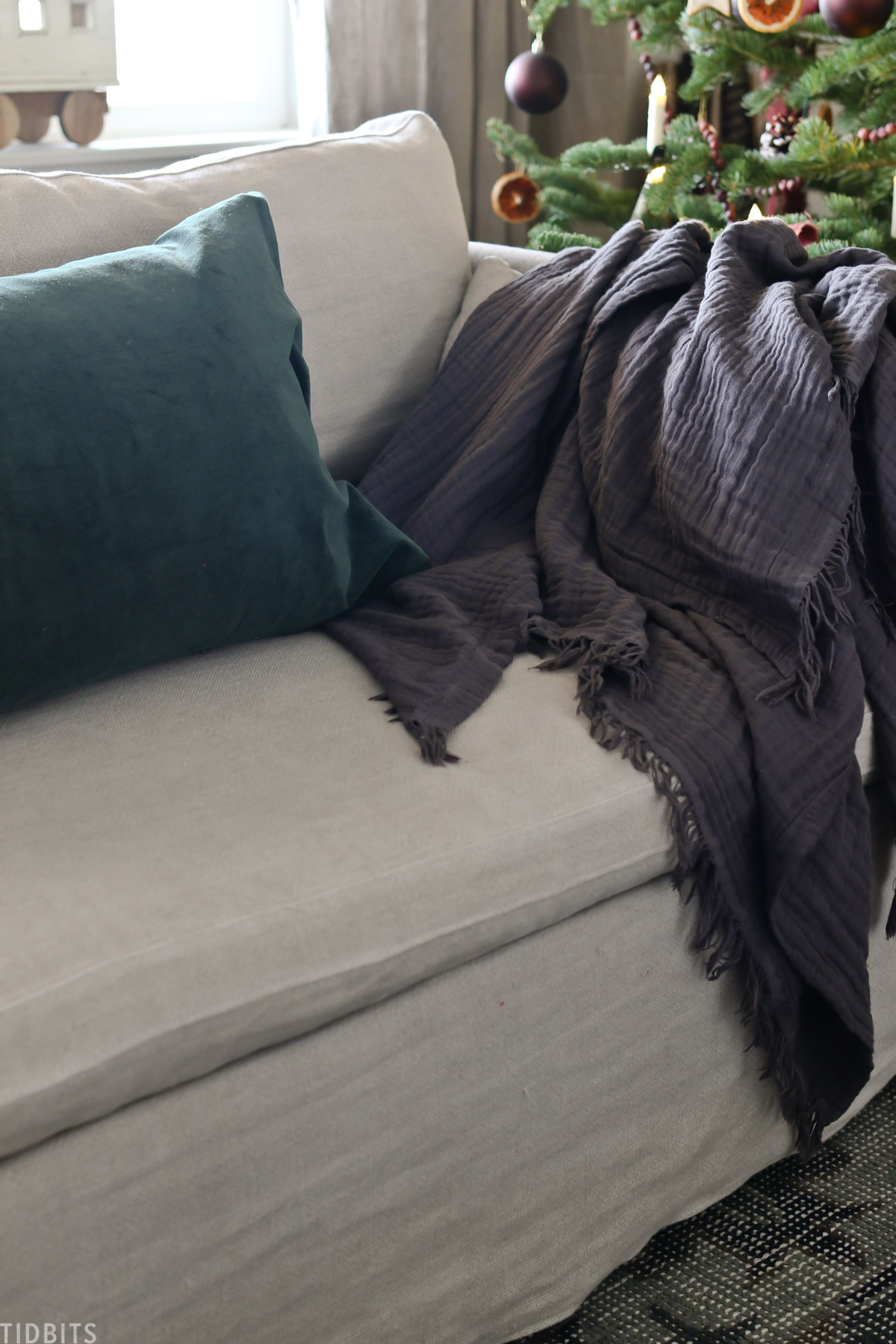 throw blanket and pillow resting on a living room couch