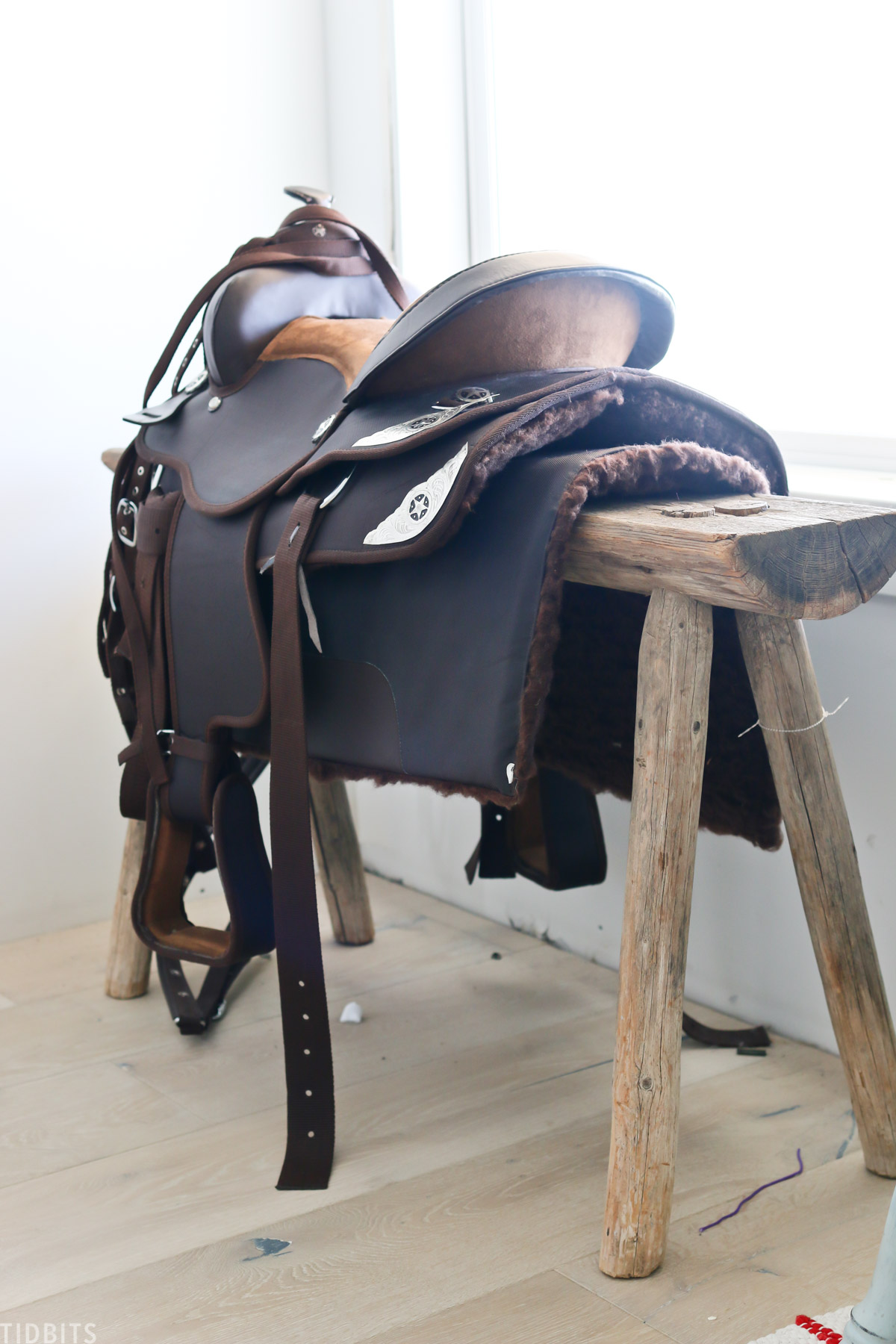 horse saddle hanging over bench