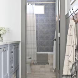 Split Bathroom Design Ideas and Room Reveal