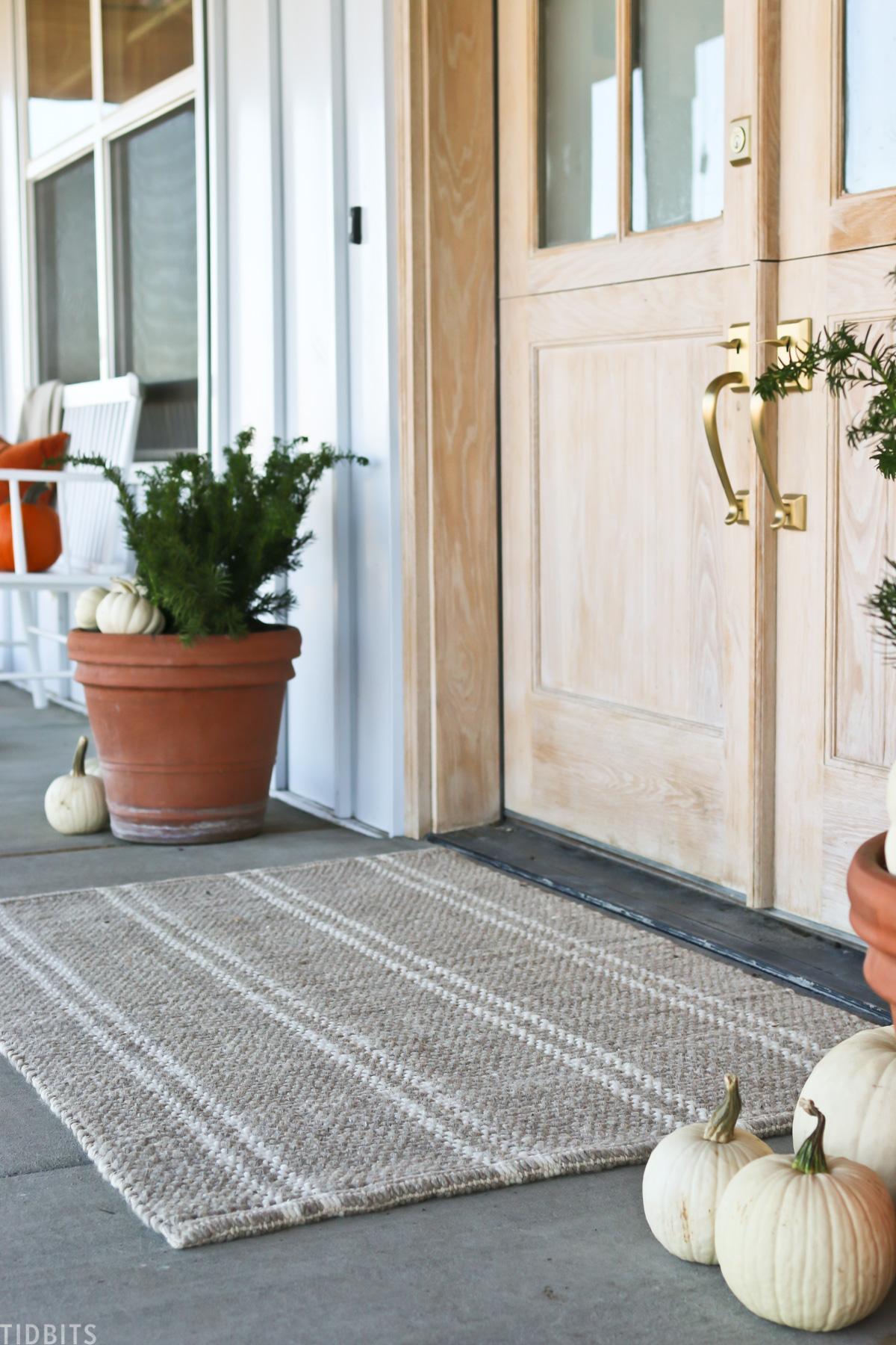 decorative striped rug in front of front door