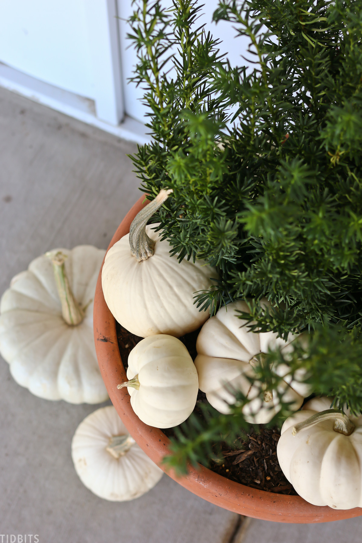 white pumpkins placed in a large pot with green florals